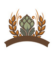 beer brewery logotype hops with wheat spikelets vector image