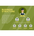 Business Structure Infographic Tree infographic vector image