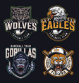 colorful sports teams logos collection vector image vector image