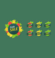 fresh sale set design labels made citrus vector image vector image