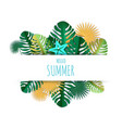 hello summer card hand lettering typography vector image