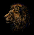 lion color profile portrait a lions head vector image vector image
