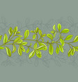 marjoram pattern vector image