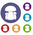 mushroom icons set vector image vector image