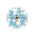 winter tree top view vector image vector image