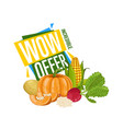 wow offer discount poster with fresh vegetable vector image vector image