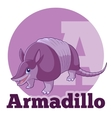 ABC Cartoon Armadillo vector image vector image