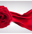 Background Red Rose vector image vector image