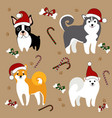 dogs in santa hats christmas card vector image vector image