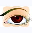 eye plume vector image vector image