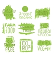Farm Vegan Food Green Set Of Label vector image vector image