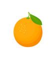 fresh cartoon orange isolated on white background vector image