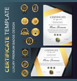 professional luxury certificate template with vector image vector image