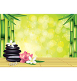 spa bamboo stones green background vector image vector image