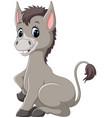cute baby donkey cartoon vector image