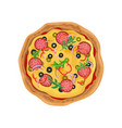 appetizing round pizza with salami fast food vector image