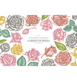 floral design with pastel roses vector image