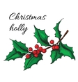 Hand drawn Holly Christmas mistletoe plant vector image vector image
