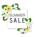 summer sale banner with flowers and waves vector image vector image