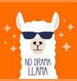 white llama with sunglasses and lettering vector image vector image