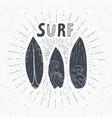 vintage label hand drawn surf boards grunge vector image