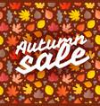 autumn sale season sale concept vector image vector image