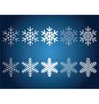 Beautiful snowflakes vector image