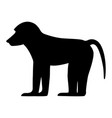 black silhouette baboon vector image vector image