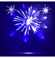 Blue background with fireworks vector image vector image