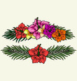 exotic flowers colorful vintage concept vector image