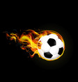 flying fiery ball on black background vector image
