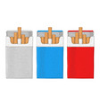 pack cigarettes hand drawn sketch vector image