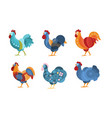 set roosters with creative pattern vector image