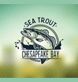 vintage sea trout fishing emblems labels and vector image vector image
