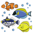 Set of tropical fish isolated objects vector image