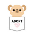 adopt me dont buy dog in the pocket pet vector image vector image