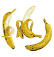 bananahalf peeled banana isolated on white vector image