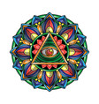 mandala eye art vector image