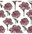 seamless floral pattern with peony vector image