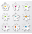 set of paper flowers vector image