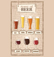 beer types a visual guide to types of beer vector image vector image