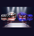 boxing gloves with prints of the usa and vector image vector image