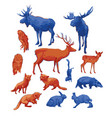 collection different forest animals isolated on vector image