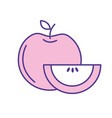 delicious apple with slice and exotic food vector image vector image