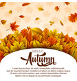 hello autumn banner templat vector image vector image