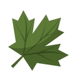 maple leaf green sign canadian vector image vector image
