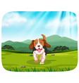 puppy in nature park vector image vector image