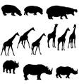 hippo giraffe rhino vector image