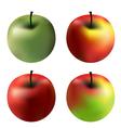 gradient apples vector image