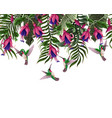 border with hummingbirds and tropical flowers vector image vector image